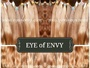 Virgin Russian Hair Extensions by EYE OF ENVY