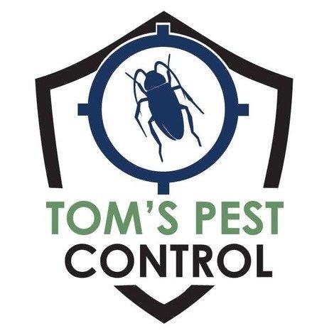 Tom's pest control annerley